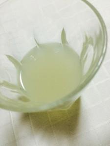 lemongina4